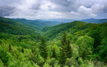 Great Smoky Mountains National Park is the most visited in the nation, by more people than the Grand Canyon and Yellowstone combined. (Steve Harwood/Flickr)