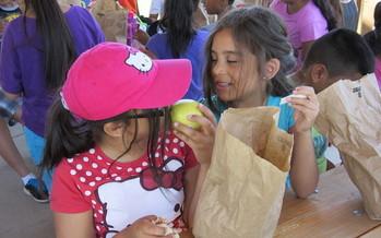 El Servicio de Comida de Verano es un programa federal que provee recursos para comidas veraniegas de los ni�os durante el receso escolar. (School's Out Washington)