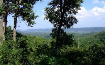 State-owned lands such as Shawnee State Forest could be opened to oil and gas drilling if state senators override a veto from the Governor. (ODNR)