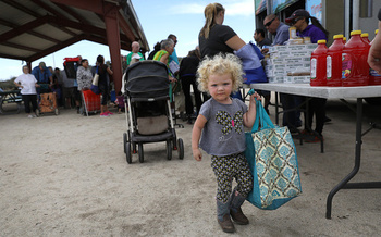Children, seniors and people with disabilities receive almost 70 percent of SNAP benefits. (Getty Images)