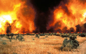 Wildfires in the western United States have doubled since 1985, according to a study from the University of Idaho. (Michael Pellant/Bureau of Land Management)