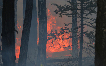 According to the Environmental Protection Agency, the size and frequency of wildfires have been on the rise since 1983. (Getty Images)
