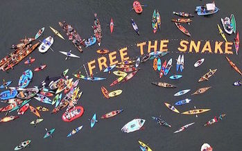 This is the third year of the Free the Snake Flotilla. Last year, around 350 people paddled out to oppose four dams on the river. (Free the Snake Flotilla)