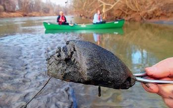 Coal ash from the bottom of the Dan River near the site of Duke Energy's spill. (Sierra Club)