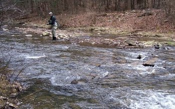 Anglers say they're seeing more and better brook trout since the North River has been restored closer to its natural state. (Mossy Creek Fly Fishing)