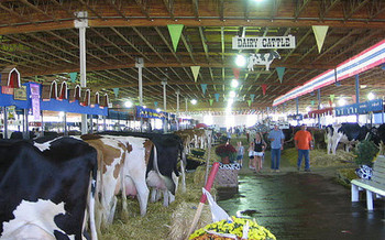 The dairy industry relies on foreign-born labor, although it isn't eligible for the H-2A visa. (Kenneth Freeman/Flickr)