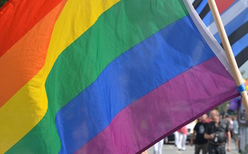 In April, the U.S. Court of Appeals in Chicago ruled that Title VII of the Civil Rights Act protects gay employees from discrimination. (fsHH/Pixabay)