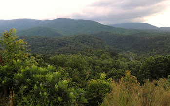 The Tennessee Wilderness Act is now part of the Federal Land Mangement Act of 2017 and would protect almost 20,000 acres in the Cherokee National Forest. (John Iwanski/Flickr)