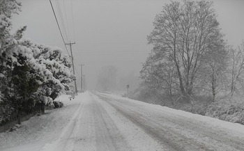 A recent nonpartisan study found coal and nuclear power proved more, not less, vulnerable during severe winter storms. (Pixabay)