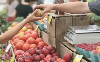 The USDA's Food Insecurity Nutrition Incentive program provides grants to state and local governments and nonprofit organizations to create incentives for food stamp recipients to shop at farmers' markets and other fresh food outlets. (Pixabay)