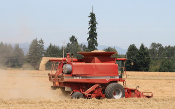 A new report finds cropland is expanding in Oregon at nearly 230 square kilometers a year. (born1945/Flickr)