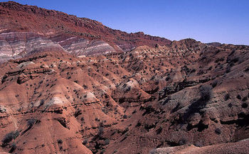 Dinosaur fossils more than 75 million years old have been discovered at Grand Staircase-Escalante National Monument, designated in 1996. (Azuki350/Wikimedia)