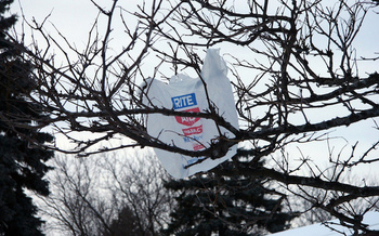 Fewer than 5 percent of single-use plastic bags are recycled. (Kate Ter Haar/Flickr)