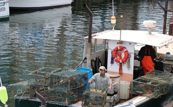 Climate change is raising ocean temperatures and acidity, affecting Maine's fishing and lobster industries. (mroylbca/Pixabay)