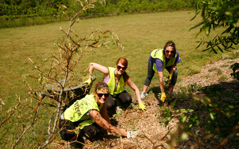 Employees from North Carolina businesses participate in projects for nonprofits on Earth Day with the coordination of Earthshare NC. (Earthshare NC)