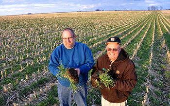 Agriculture organizations say a new cover-crop incentive program will help improve land resiliency.<br />(USDA)