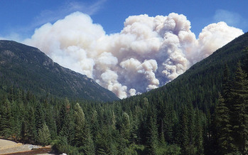 Wildfires raged across Washington state this year and scientists point to climate change as the reason for their intensity. (USFS/Flickr)