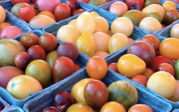 The USDA's Food Insecurity Nutrition Incentive program provides grants to state and local governments and nonprofit organizations to create incentives for healthier food choices for SNAP recipients. (Columbia Farmers' Market)