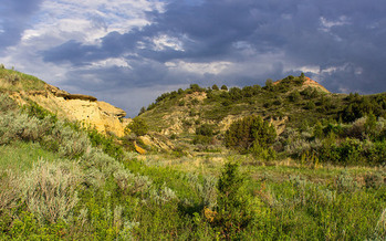 A proposed oil refinery would be located within three miles of Theodore Roosevelt National Park. (Matt Zimmerman/Flickr)