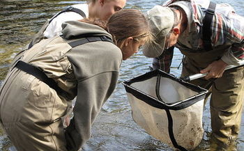 Students across Utah are learning more about the connection between clean water and healthy trout populations. (USFWS)