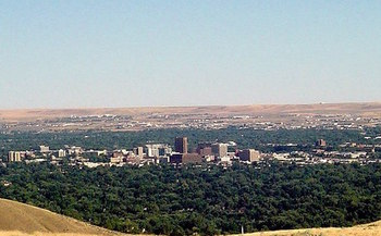 The Treasure Valley has about 2.4 million trees and room for twice that amount. (Mweston85/Wikimedia Commons)