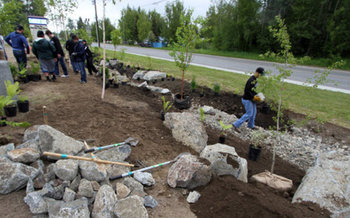 Installing rain gardens is one method for catching and conserving storm water before it can become polluted runoff. (U.S. Fish & Wildlife Service)