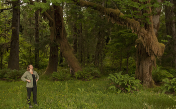 The Olympic Peninsula is recognized as a World Heritage Site because of its old-growth forests. (The Nature Conservancy)
