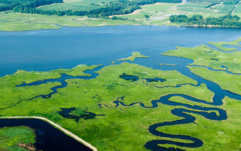 The federal spending bill includes $73 million for Chesapeake Bay restoration efforts. (Chesapeake Bay Program)