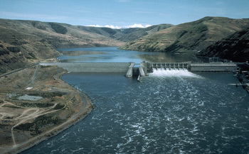 Conservation and fishing groups say four lower Snake River dams are driving salmon to the brink of extinction. (U.S. Army Corps of Engineers)