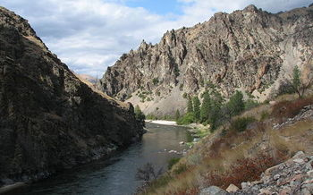 Salmon runs on the Middle Fork of the Salmon River have fallen drastically since the lower Snake River dams were built, according to the National Wildlife Federation. (Rex Parker/Wikimedia Commons)