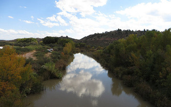 The protected area includes 230 acres of cottonwood-willow forest along the Verde River corridor. (Ken Lund/Flickr)