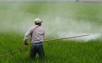 According to Earthjustice, approximately 10,000 to 20,000 pesticide poisonings occur every year among farmworkers. (Pixabay)