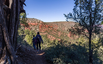 Ironwood Tree Experience's American Experience program takes Arizona teens hiking and backpacking through iconic western landscapes. (Flickr)
