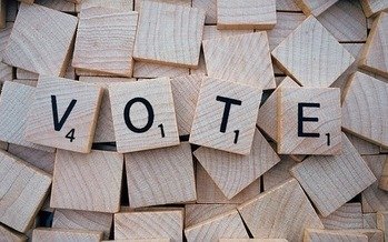 In non-presidential election years, typically two-thirds of the people who turn out to vote are age 50 or older. (Pixabay)