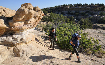 New Mexico has approximately 963 trails, including 513 hiking trails and 213 for mountain biking. (blm.gov)