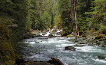 The Land and Water Conservation Fund has helped protect part of the world-renowned Olympic National Park. (Sean O'Neill/Flickr)