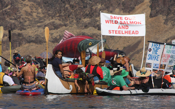 More than 400 people showed up to last year's Free the Snake Flotilla outside of Lewiston, Idaho. (Save Our Wild Salmon)