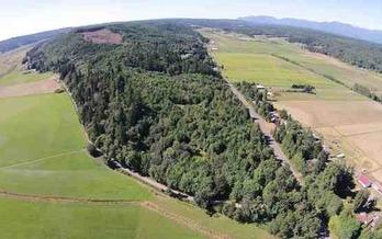 La Legislatura de Washington fonde� un programa piloto para convertir la Cumbre Chimacum (�Chimacum Ridge�) en bosque comunitario. (Cortes�a de Phil Vogelzang)