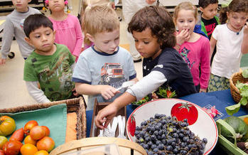 The Minneapolis Public Schools procured 130,000 pounds of produce from 15 farms in 2017. (wbaa.org)