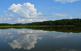 Chesapeake Bay is in danger of increased pollution from rivers and streams. (mcfisher/Pixabay)