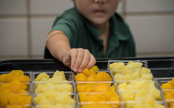 During the 2017-2018 school year, Nebraska Farm to School reported $2.7 million in total local food purchases. Products included melons, various vegetables, chicken and milk. (USDA)