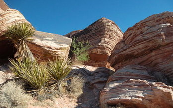 Red Rock Canyon is a major draw in Nevada, for visitors and residents alike. (kconnors/morguefile)
