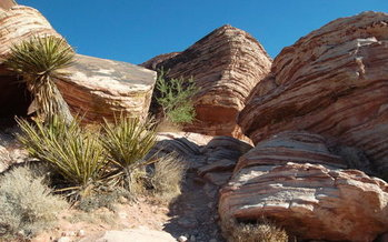 Red Rocks Canyon is one of hundreds of places in Nevada that have benefited from the Land and <br />Water Conservation Fund, but the new federal budget proposal barely acknowledges the fund. (kconnors/Morguefile)