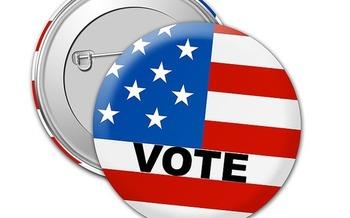 Los cambios propuestos a la iniciativa electoral de Florida requerir�an el nombre del promotor de la iniciativa y el porcentaje de dinero recabado en fuentes internas que ser�n reportadas por los organizadores de las enmiendas a la campa�a. (TheDigitalArtist/Pixabay)
