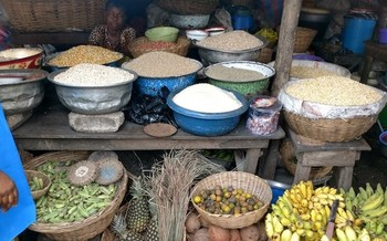 Through Roots to Glory Tours, American chefs traveled to Benin and Togo to explore their cuisine. (Devon Hamilton/Michael Fields Agricultural Institute)