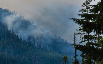 Mientras aumenta la severidad de los incendios en el Noroeste, un nuevo estudio encuentra que s�lo son la d�cima parte de los acres que hist�ricamente arden cada a�o. (LDELD/Flickr)