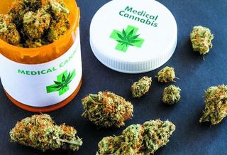 About 73,000 New Mexicans have enrolled in the state's medical marijuana program since it was introduced in 2007. (health.harvard.edu)