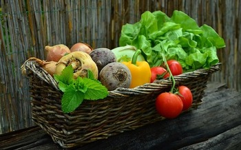 A well-maintained food garden yields a half-pound of produce per square foot per growing season, according to the National Gardening Association. (Pixabay)