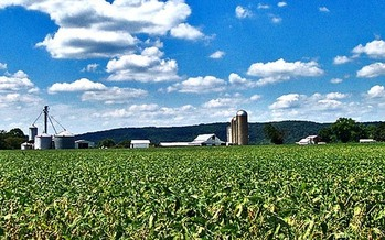 Ohio now is home to 77,000 farms, the highest number since 1997. (Don O'Brien/Flickr)