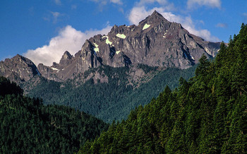 A bill in Congress would protect more than 126,000 acres of Olympic National Forest as wilderness. (U.S. Forest Service/Flickr)